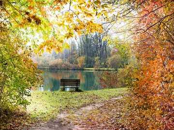 Autumn landscape - Autumn landscape at the lake