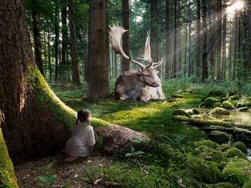 Deer in the forest - Deer, girl, forest