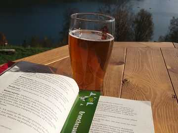 descansar con un libro - descansar con un libro junto al agua