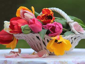 Flower basket - Basket with beautiful tulips