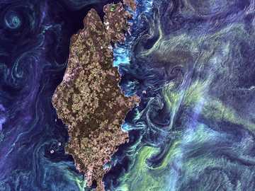 """ilustracja niebieski, brązowy i żółty satelity - W stylu obrazu Van Gogha """"Gwiaździsta noc"""" ogromne skupiska zielonkawego fitoplanktonu wirują"""