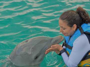 woman playing with dolphin in body of water - This tour was part of my Job (travel agency), in the beginning I dont want to Interact ( make them w