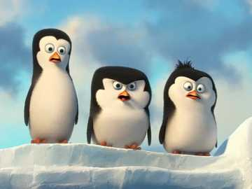 "Penguins from Madagascar - ""The most time is for the man who does not postpone anything."""