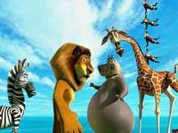 "Madagascar 3 ""- this is just a circus! - ""Not always animal lovers are also human lovers."""