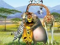 "Madagascar 2 - ""Even the stars cry with the one who cries at night."""