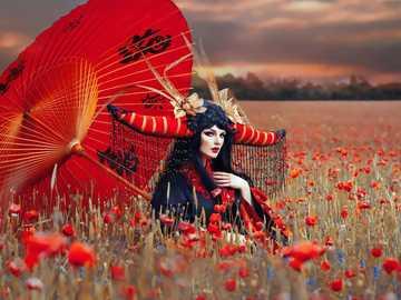 maki czerwony-rogi kobieta parasol - maki czerwony-rogi kobieta parasol