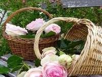 Korg med rosor. - Korg och vackra rosor.