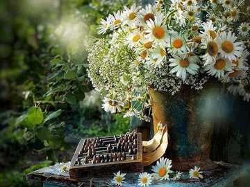 Cuando tienes un alma sensible - Cuando tienes un alma sensible, incluso una flor silvestre te fascinará con su belleza con modestia
