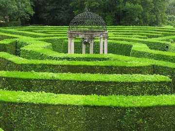 Grünes Labyrinth - Grünes Labyrinth sehr cool