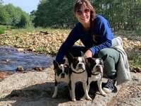 Câini Lola - Câini de Lola Iglesias