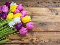 Virágok - tulipánok