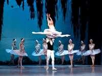 Swan Lake Ballett