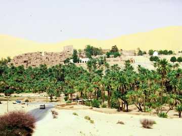 Taghit - la perla del deserto - Taghit - la perla del deserto