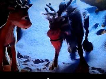 """Niko's reindeer saves his brother - """"Nothing can be changed: statistically, there is one death per person."""""""