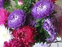 fleur sur table