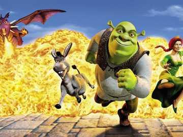"""Shrek 5 ..... - """"L'amicizia tra donne non è altro che un patto di non aggressione""""."""