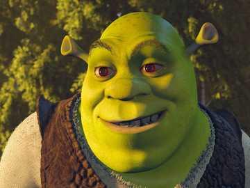 """Shrek .......... - """"Un uomo spende soldi che non ha in cose di cui non ha bisogno per impressionare le persone che"""