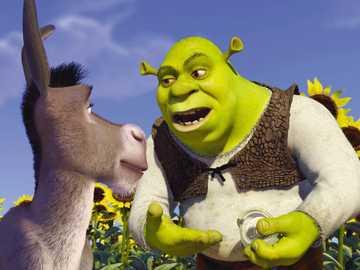 """Shrek 5 ... - """"La cosa migliore della domenica è sabato sera."""""""