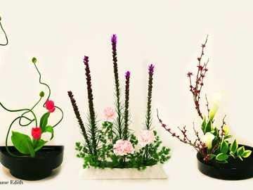 Ikebany różne - Ikebana................