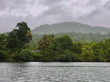 Tatai resorts - green trees beside body of water during daytime. កោះកុង, កម្ពុជា