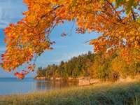 Eljött az ősz