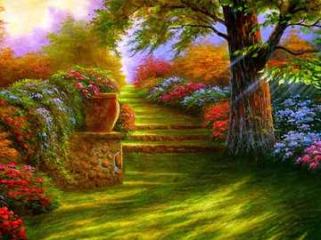 colorful garden - Colorful garden with lots of flowers