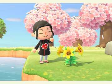 Itachi animal crossing - Itachi animal crossing nice landscape
