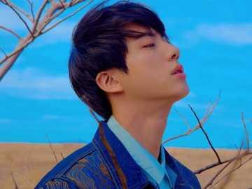 Kim Seok Jin. - Just enjoy Kim Seok Jin's beauty. I hope you had fun doing this. Thank you.
