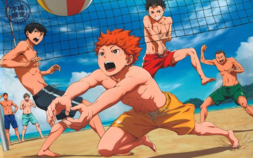 Haikyuu Strandtag - Haikyuu !! Offizielle Kunst. Karasuno spielt Beachvolleyball (13×8)