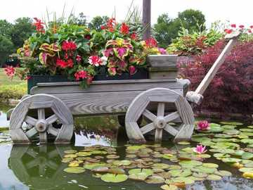 Jardín campestre - Huerto campestre .............