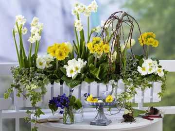 wiosenne kwiaty - wiosenne kwiaty......