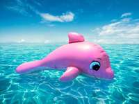 Inflatable Dolphin - Dolphin in the Sea (pink!)