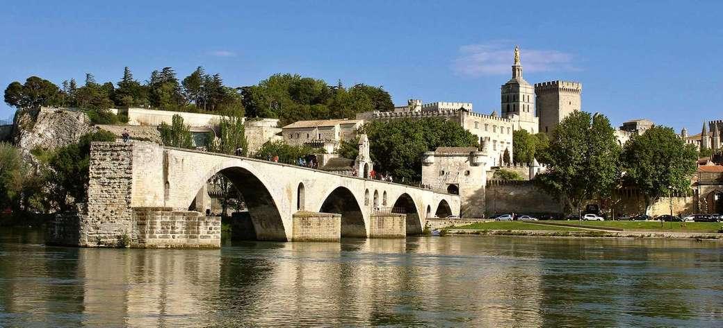 Avignone Provenza Francia (14×6)