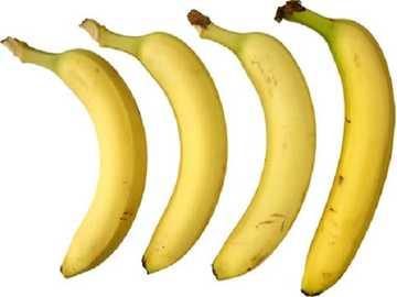 y è per le banane gialle - lmnopqrstuvwxyzlmnop
