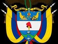 COLOMBIA SHIELD - BARN LÄTT