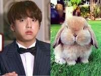 om det är en kanin har - upp 90 cm ner 90 cm höger 90 cm vänster 90 cm