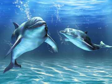 DELFINES EN LAS PROFUNDIDADES - Profundidades, Mar, Dos, Delfines