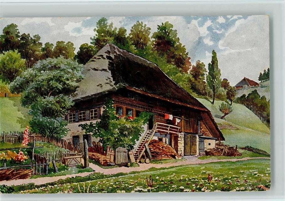 Παλαιά αγροικία του Μέλανα Δρυμού (11×8)