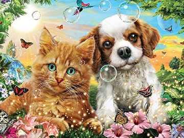 + Doggy and kitty + - &&&& Piesek i Kotek &&&&