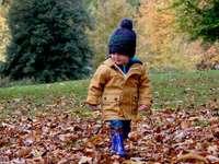 Child walking through leaves