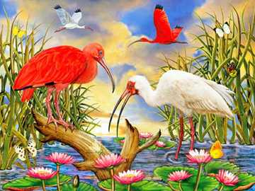 Painting. - Puzzle: colorful birds.