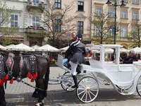 carruaje-Cracovia