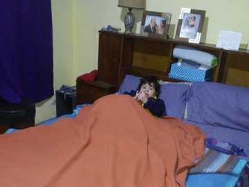 Milo na gapę - Milo w łóżku swoich rodziców bardzo zainstalowany