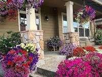 ház virágok