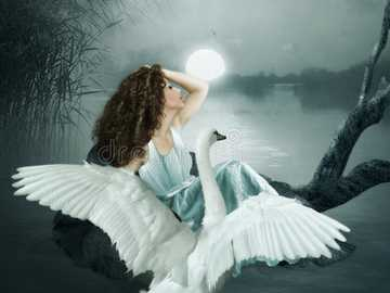 THE GIRL AND THE SWAN - A young girl with hair at night under the light of the moon and a white long, curly swan