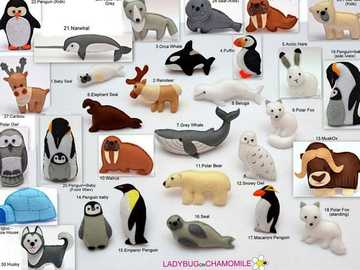 arctic animals - arctic animals for school homework