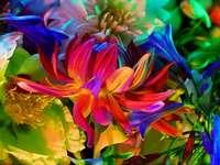 Flores de primavera - Un jardín con hermosas flores.