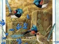 ೋ Kunst met vogels ೋ ღ