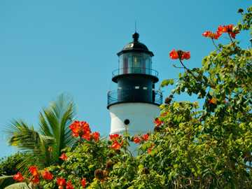Lighthouse - colorful flowers and lantern