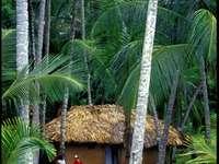 maison de plage - Plage de Galdona, Venezuela